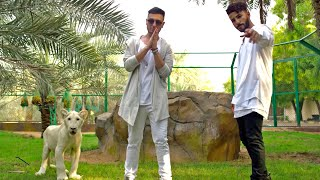 Adam Saleh - Waynak ft. Faydee (Official Music Video)