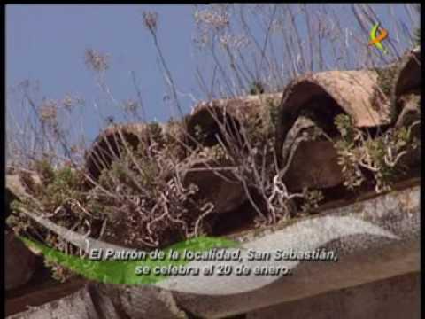 """Campillo de Deleitosa """"Extremadura TV"""""""