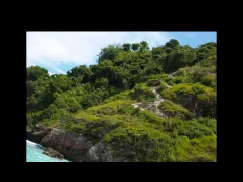 Video Budi Nusa Tours - Nusa Penida Tour Services