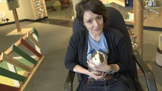 Should you bring a pet into your preschool classroom? | NO SMALL MATTER a film about early education