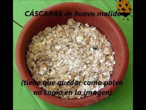 FÁCIL Alimento para perros/gatos (croquetas y en pasta)