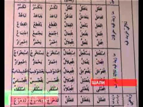 Конкурс чтецов Корана в Шали - видео