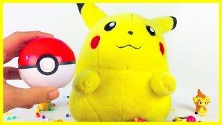 Grotle  - (Pokémon) - Pokémon GO Pokeball Pikachu Grotle Torterra Chimchar Pichu Raichu Verrassingen Surprise Playdoh