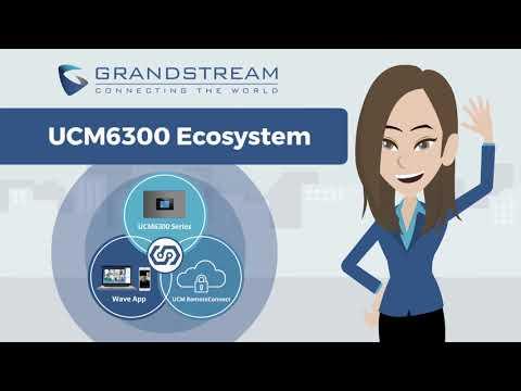 Grandstream UCM6301 IP PBX Systems