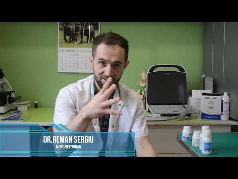 Prevenirea tratamentului viermilor rotunzi
