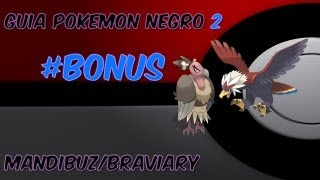 Braviary  - (Pokémon) - Pokémon Negro 2 -
