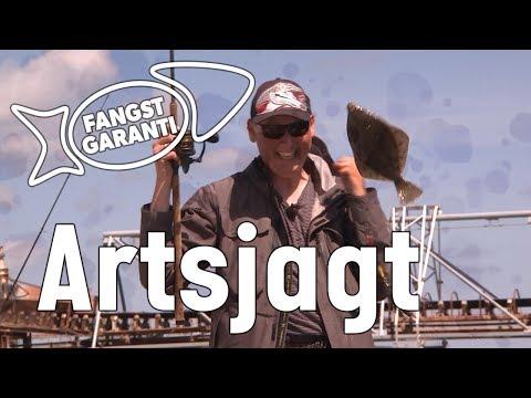 Artsfiskeri ved Glatved Strand med Fangstgaranti