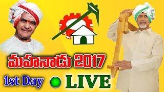 Mahanadu 2017 Live  vizag  mahandu tdp
