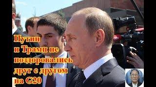Путин и Трамп не поздоровались друг с другом на G20