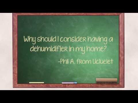 Do I need a dehumidifier in my home?