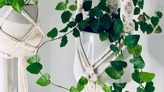 Macrame Plant Hanger | Diamond Pattern | Intermediate Tutorial
