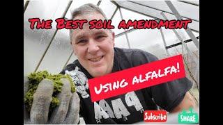 The Best Soil Amendment