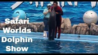 Bangkok Dolphin Show Series 2