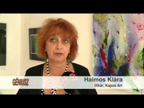 Barcsi Nemzetközi Művésztelep – Film Vágner Mátyás életéből (Vágner Mátyás és Balogh Írisz, 2006)