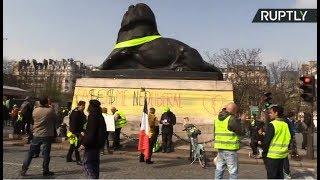 Yellow Vest protest in Paris: Week 19