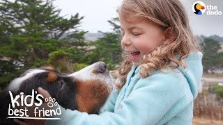 Enormous Dogs Love Taking Care Of Their Little Sister | The Dodo Kid's Best Friend