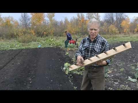 Приспособление для посадки чеснока