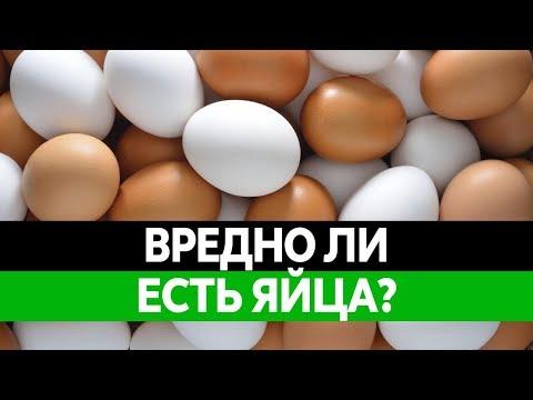ВРЕД И ПОЛЬЗА ЯИЦ. Сырые яйца и сальмонеллез. Чем полезны и чем вредны?