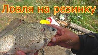 Осенняя рыбалка на резинку и пружины. My fishing