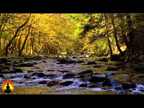 8 Hour Deep Sleep Music, Peaceful Music, Relaxing, Meditation Music, Sleep Meditation Music, ☯3491