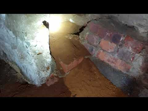 Rat Burrow Found in Basement of Commercial...