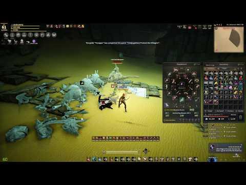 Alternative to mob grinding for exp :: Black Desert Online