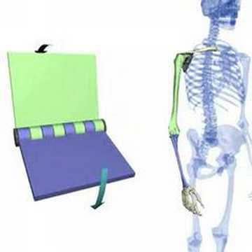 Wenn Rückenschmerzen im Bereich des Steißbeins
