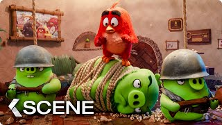 The Pigs Invade Red's Home Scene   THE ANGRY BIRDS MOVIE 2 (2019)