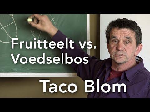 Fruitteelt vs. Voedselbos: Taco Blom