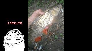 Рыбалка на миусе