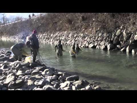 Pesca nuda di una fotografia