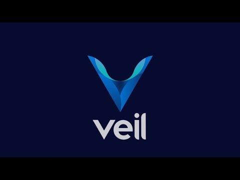 Обзор проекта Veil #2