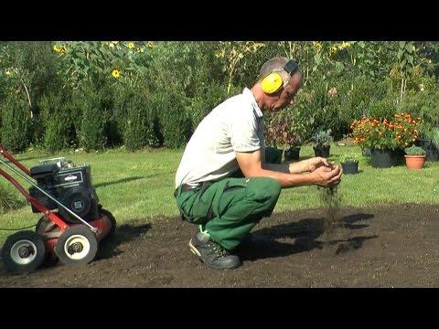 Mit dem Rasenlüfter erneuern wir den Rasen