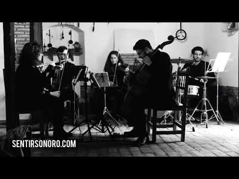 Vídeo Sentir Sonoro 1