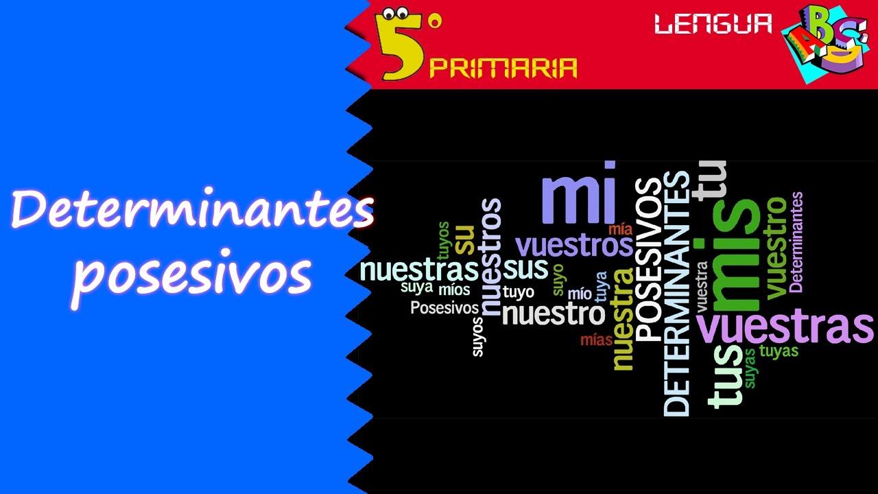 Determinantes posesivos. Lengua, 5º Primaria. Tema 6