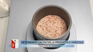 Determinări calitative la producțiile agricole