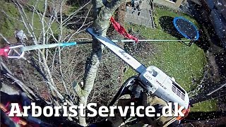 Tree removal using light rigging - Tree Climbing Arborist - Topkapning - Topkapper