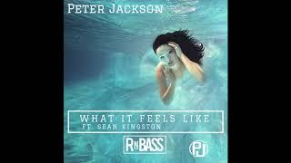 Peter Jackson - What It Feels Like ft. Sean Kingston (RnBass)