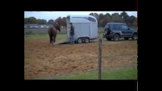 *Trailer Loading* with very difficult horse