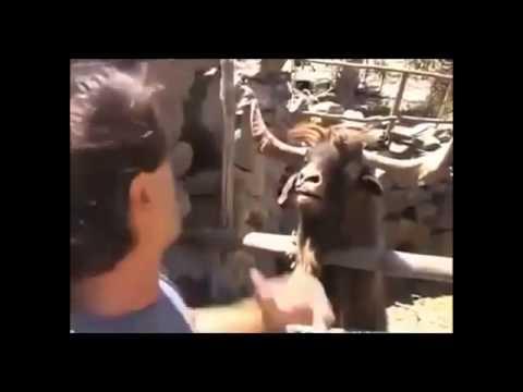 Video di sesso moglie con il marito