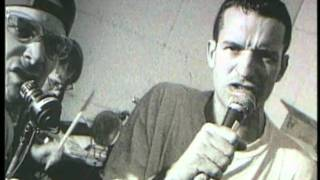 "The Vandals - ""It's a Fact"" (Glory Daze Version) - Nitro Records"
