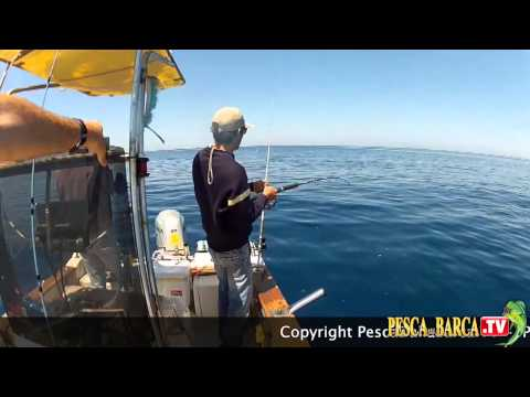 La pesca in Bashkiria su una picca di una pertica