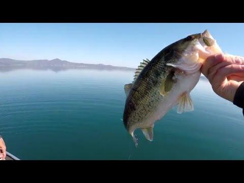 In Urals su pesca