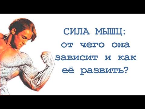 Редуксин 15 мг 60 капсул цена омск