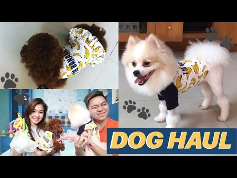 Bajunya Couple 😍🍌 | DOG HAUL