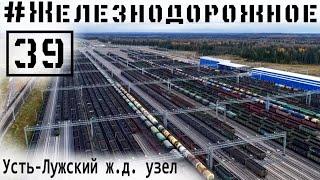 Тепловоз без машиниста едет сам! Cамая крутая ж.д. горка в России. #Железнодорожное в Усть-Луге. 39с