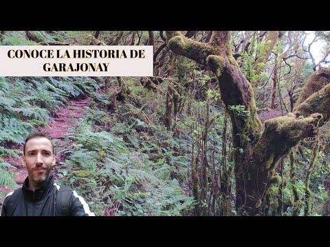 Parque Nacional De Garajonay 2 - Donde Comer La Mejor Comida Canaria