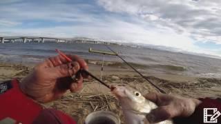 Рыбалка в парке 300 летия спб
