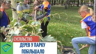 Харківські учні посадили берези у парку Горького