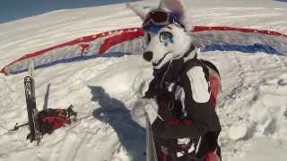 Fursuit Para-skiing (foxes can fly!)